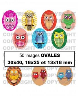 Images digitales cabochon Hiboux multicolore - 50 Ovales