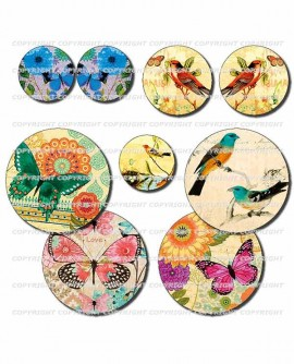 Oiseaux et papillons rétro multicolore - 72 images rondes pour cabochons