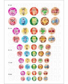 Hiboux multicolore kawaii enfantin Images digitales cabochon Rondes