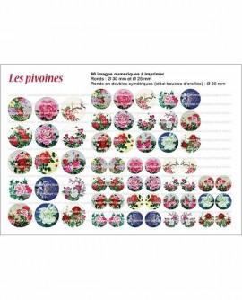 Fleurs peinture pivoines rouge rose bleu  Images cabochon ronds