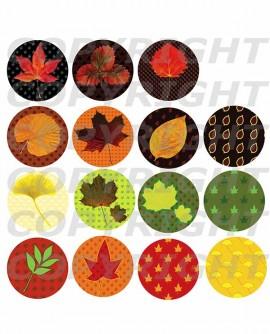 Feuilles d'automne Images digitales cabochon