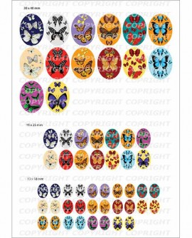 Papillon et noeud pap Multicolores Images ovales cabochon